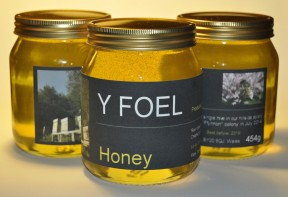 Y Foel clover honey